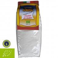 Flour Solina BIO
